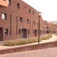 26 woningen, 5 patiowoningen, 19 appartementen plan 'De looierij' te Rijen